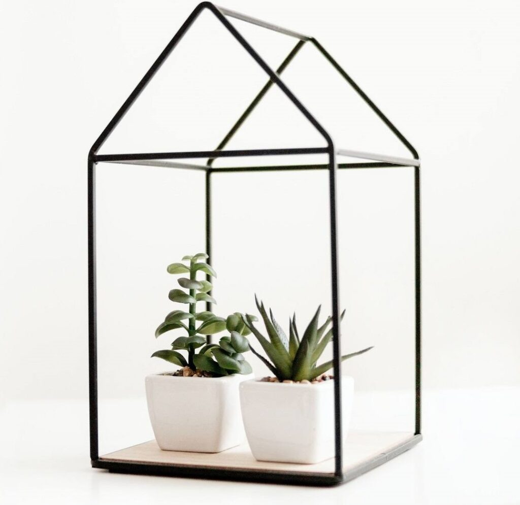 Mini Gewächshaus Glas
